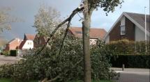 Stormschade vorig jaar