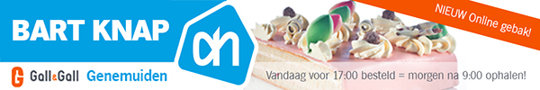 Bart Knap AH Online gebak 500