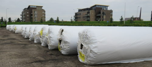 Nieuwe grasmat... Tekst en foto's : Joke Veldman