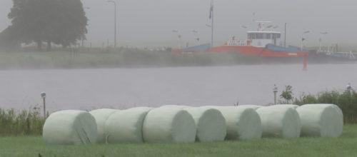 Mist... foto's Joke Veldman